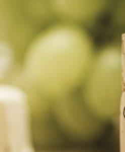 smakprovning present, Ost- och vinprovning