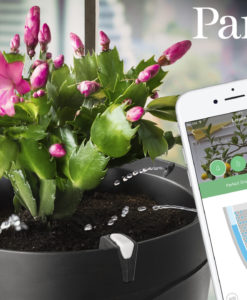 smarta presenter, Parrot Pot Smart Blomkruka Svart