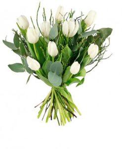 Skicka vita tulpaner